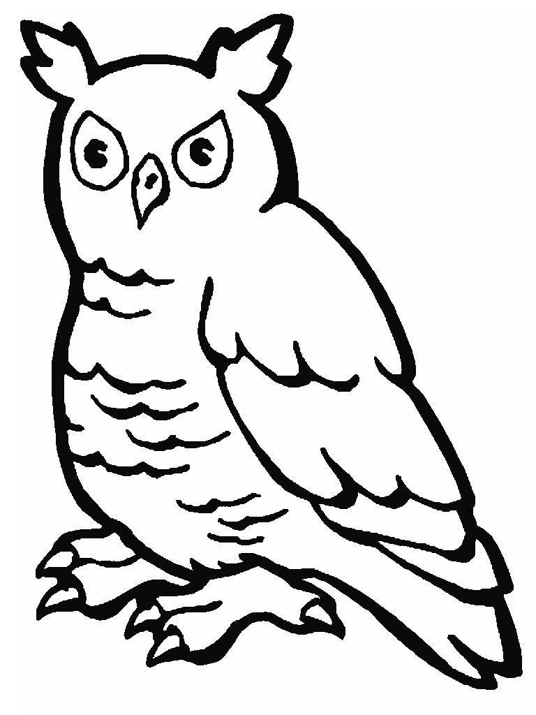 Dibujo para imprimir y colorear de Buho colorea las aves rapaces