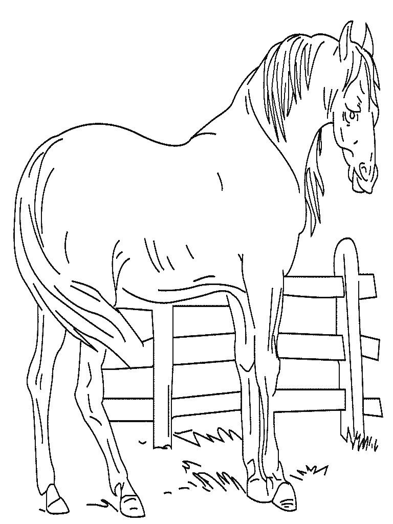 Dibujo para imprimir y colorear de Caballo para colorear en la granja